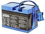 Peg Perego S.p.A Y/KB0036 - 12V Batterie 12Ah f....